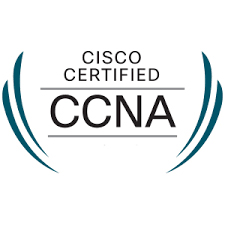 Self Paced Next Level CCNA